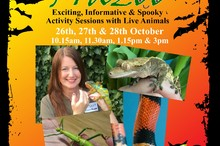 Spooky Halloween Exotic Animal Handling Sessions